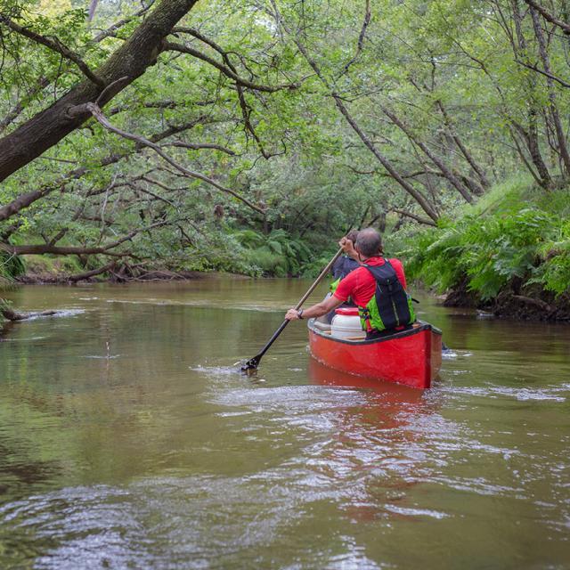 Canoe sur La Leyre Pissos