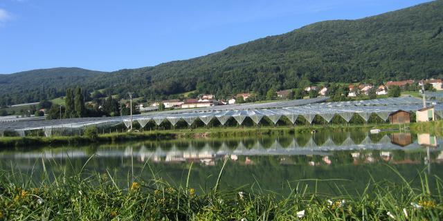 Bas Village