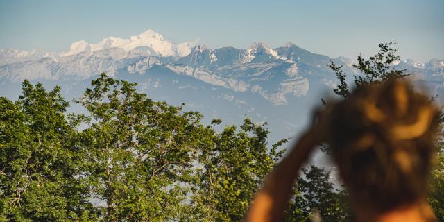 Vue sur la chaîne du Mont-Blanc