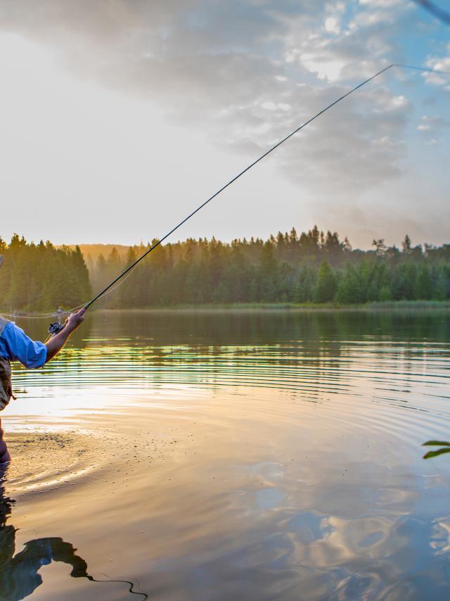 La pêche dans les Monts de Genève