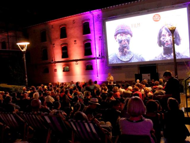 Festival International Du Film2