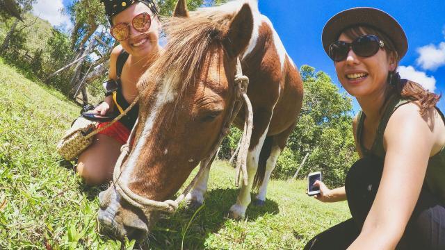 Randonnée à cheval - Bourail