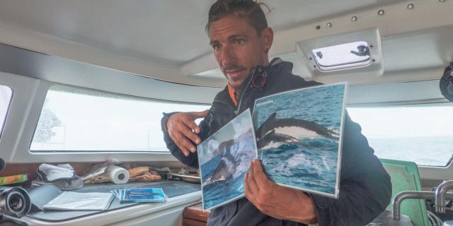 Observation des baleines - Nouméa