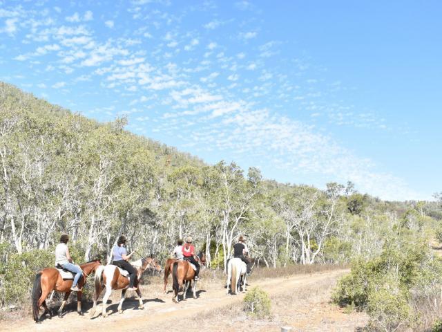 Balade à cheval - La Foa