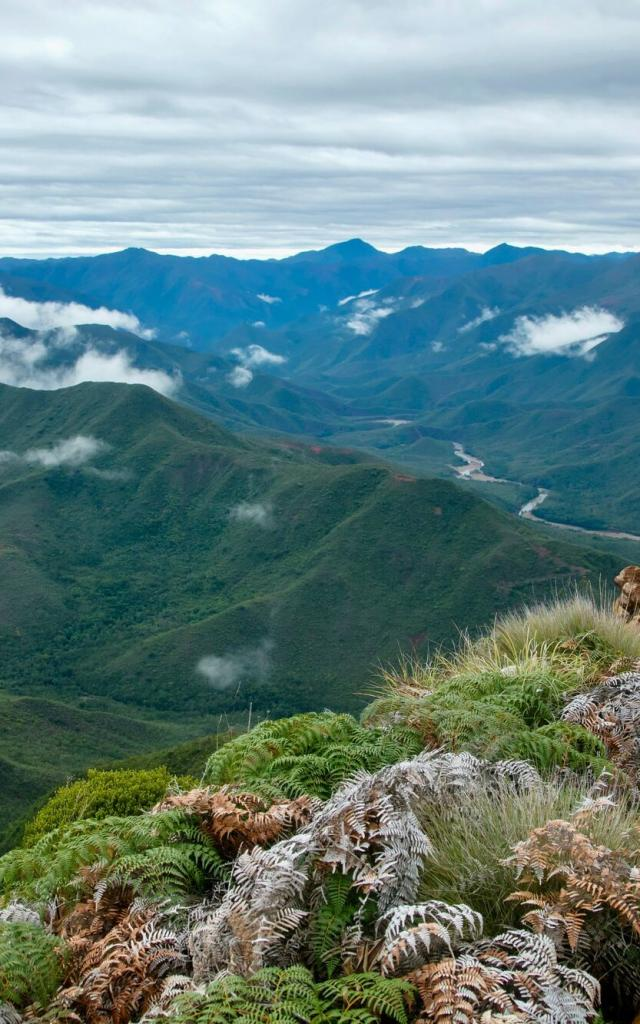 Montagne - Païta