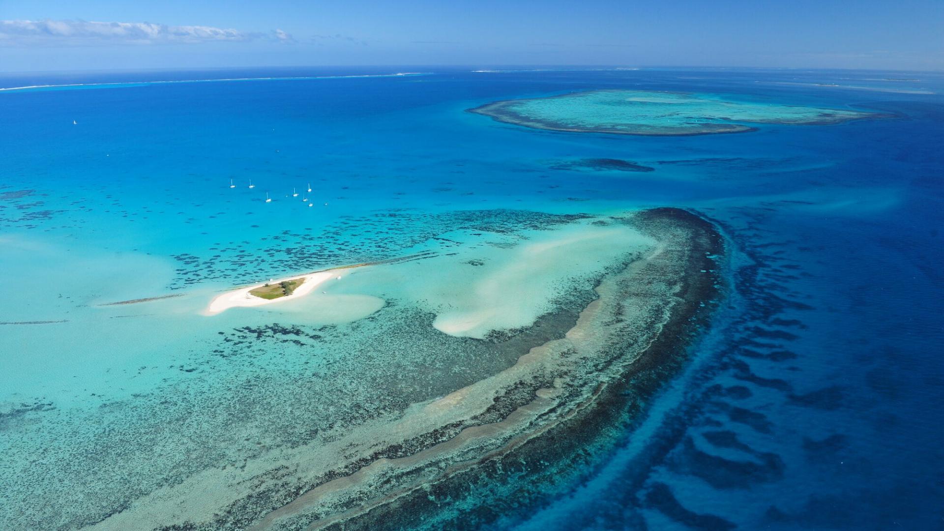 Ile Aux Goélands Nouméa © M. Dosdane Nctps