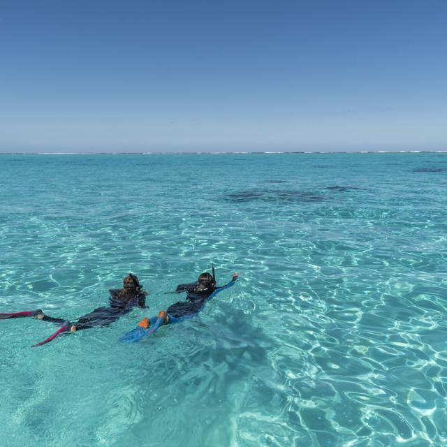 Plongée Lagon De Poé Bourail