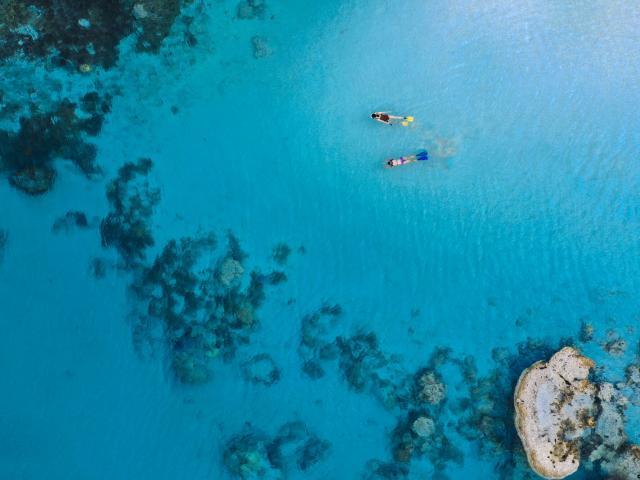 Randonnée palmée à l'Île Des Pins