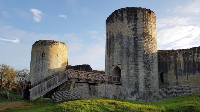 Château fort du Coudray-Salbart à Echiré