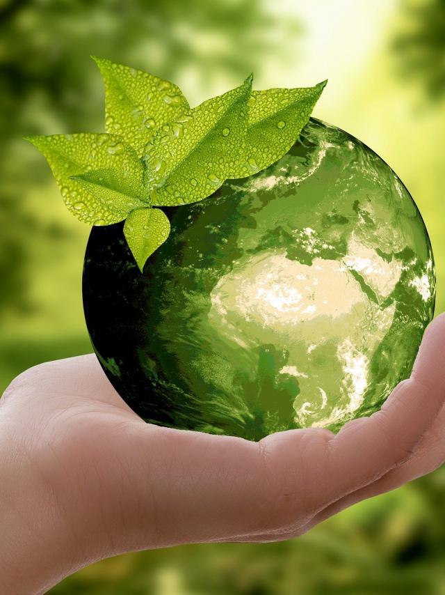 Team building développement durable