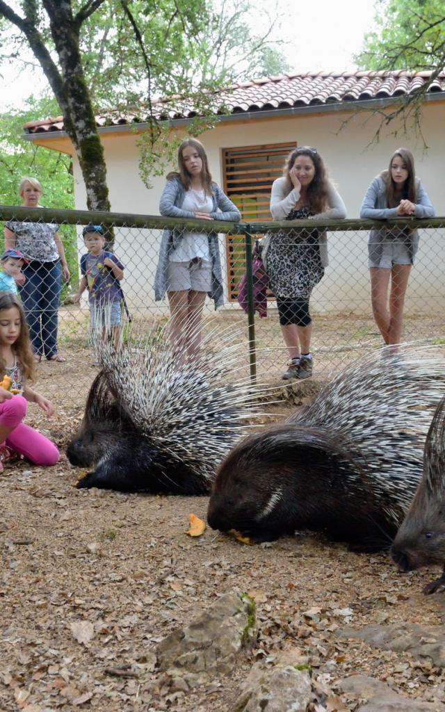 hdef-parc-animalier-de-gramat-site-touristique-gramat-2-michel-blot.jpg