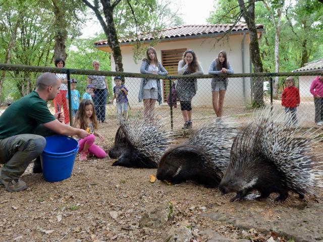 Hdef Parc Animalier De Gramat Site Touristique Gramat 2 @michel Blot