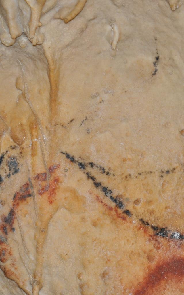 Grottes De Cougnac Gourdon .jpg