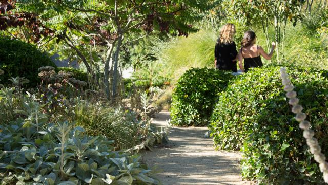Jardins Sothys Volonte Dune Famille Malika Turin 0.jpg