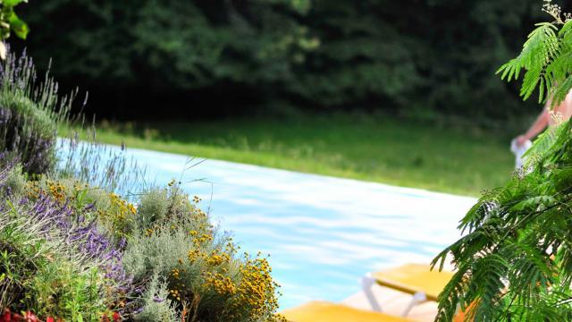 Locations Vacances Dordogne.jpg