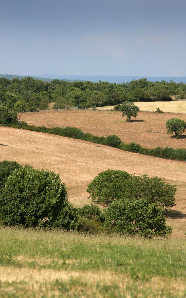 Pnr Des Causses Du Quercy J. Morel.jpg