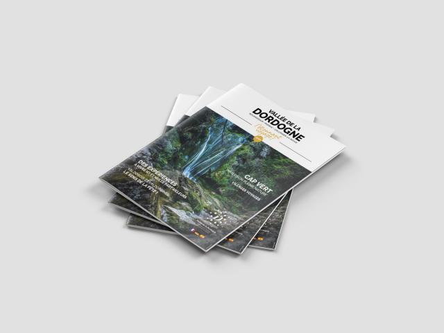 A4 Brochure Mockup 2