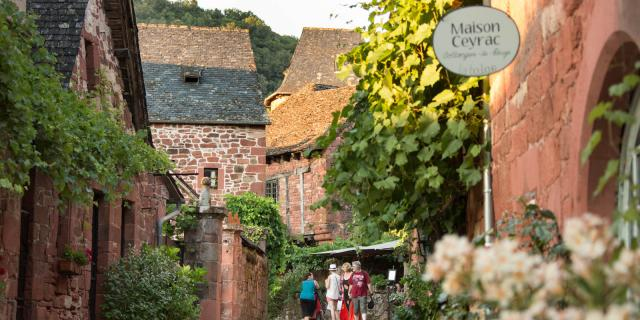 Visite Guidee Collonges Rue De La Barriere Malika Turin.jpg