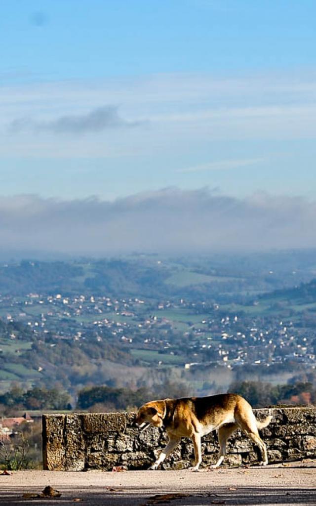 Visites Guidees Autoire Loubressac Panorama 0.jpg