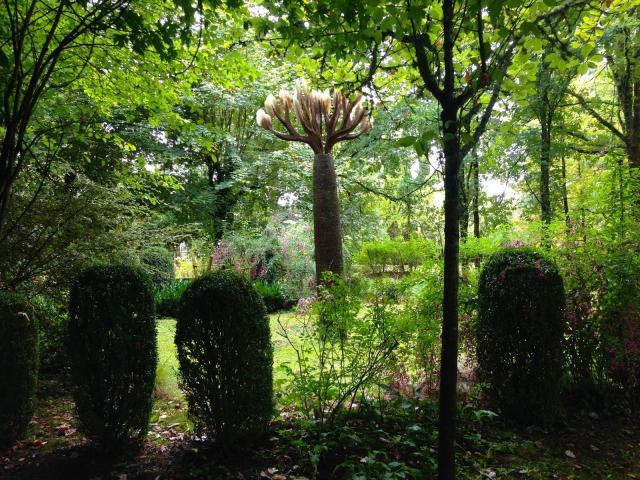 Jardins du Couvent De Meyronne