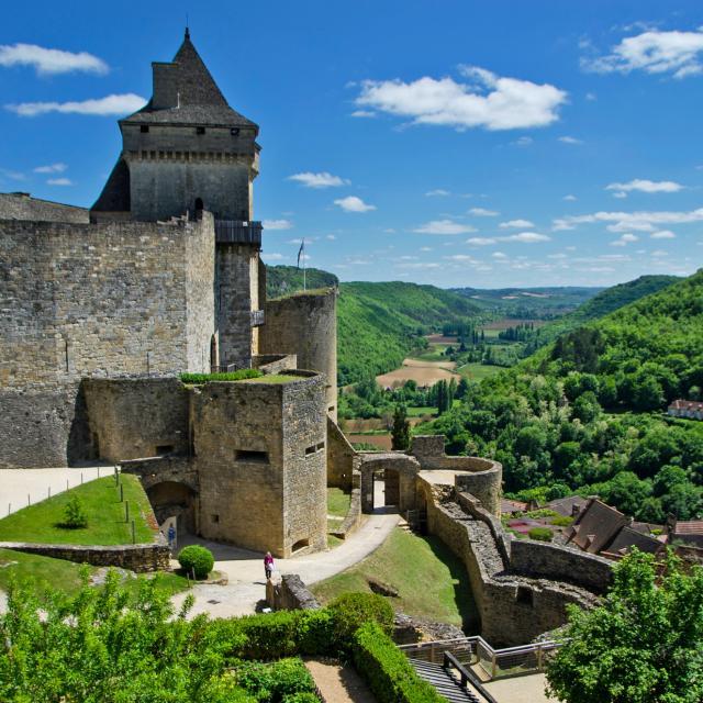 Chateau Castelnaud ®boutry