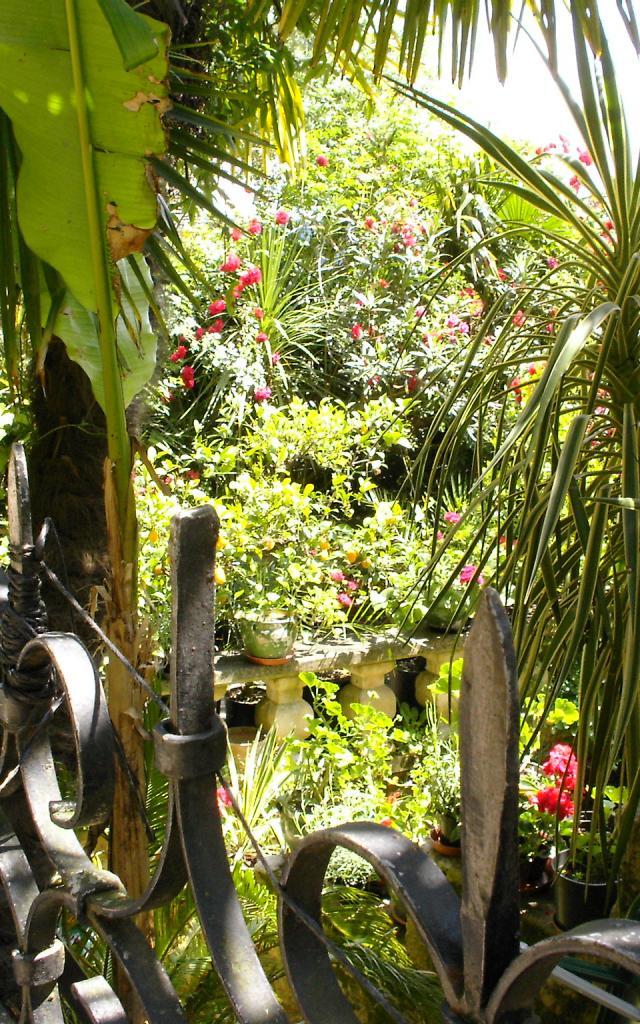 La Roque Gageac Jardins Exotique @sarlat Tourisme
