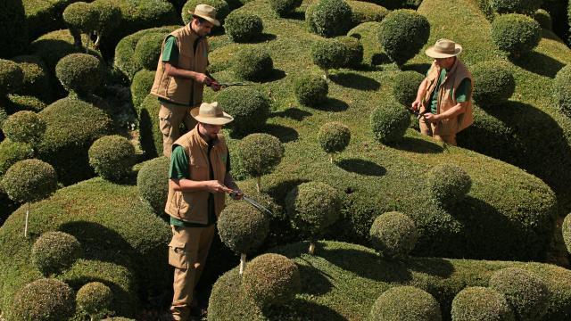 © Laugery Marqueyssac Jardiniers 25092009 Scaled