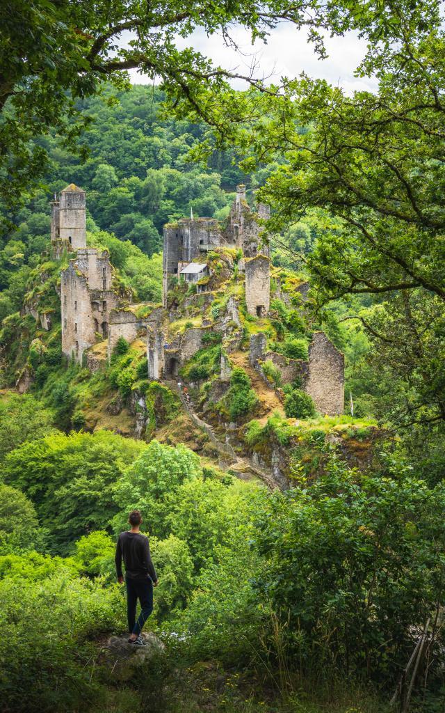 Dsc06904 © M. Seimbille Dronieguy Vallée De La Dordogne