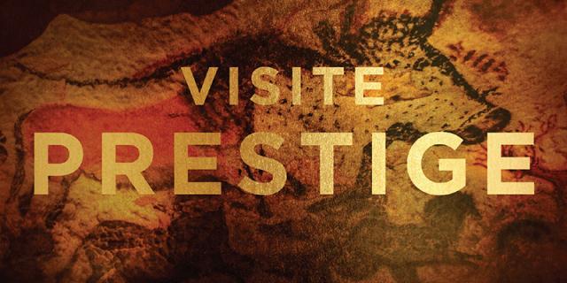Visite Prestige © Daniel Courtice