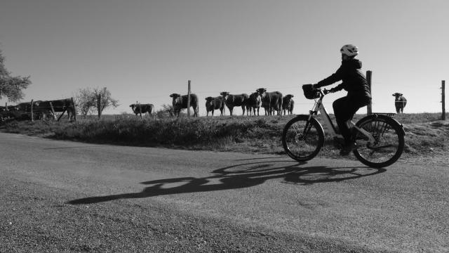 Bicyclette&découvertes