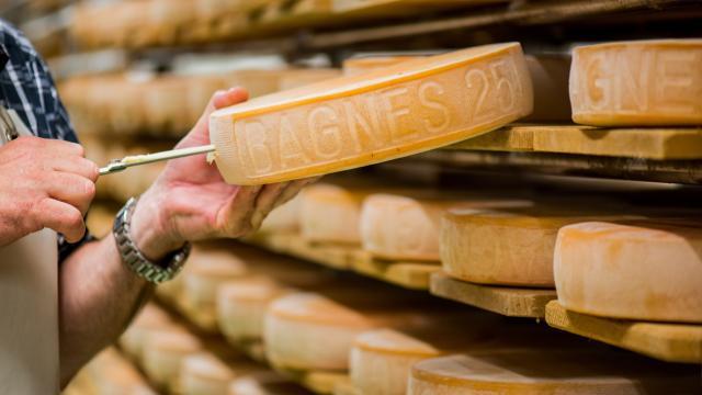 Fromages à raclette à la Fromagerie de Champsec