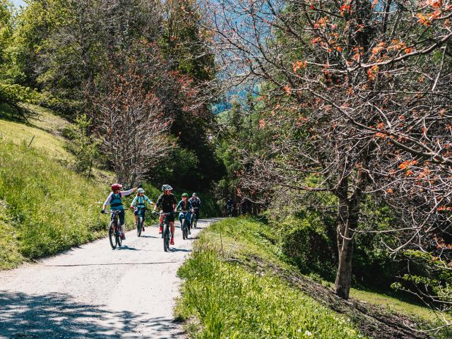 Guided e-bike tour in the region of Verbier