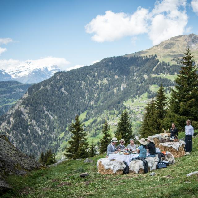 Repas gastronomique en pleine nature