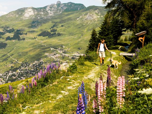 Hiking along the Bisse du Levron on the heights of Verbier