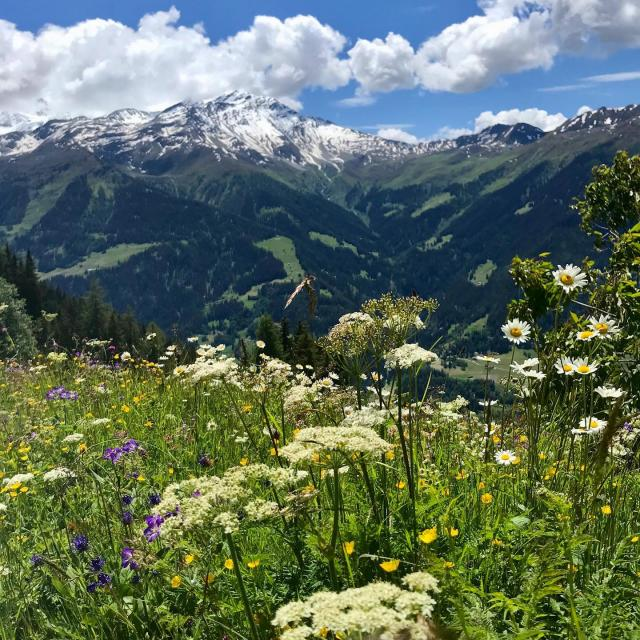 Instagram #verbier4vallees