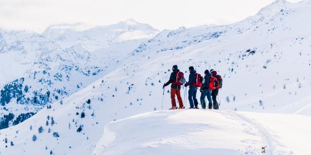 Skieurs admirant la vue sur les montagnes