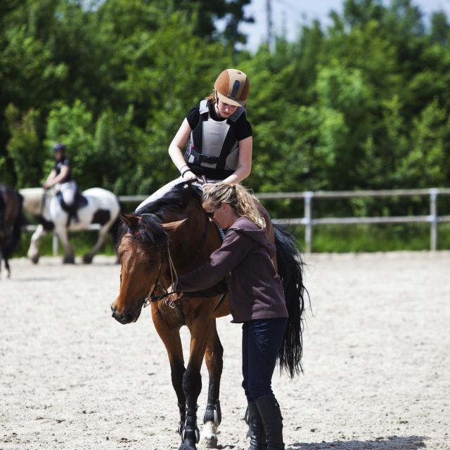bagnoles-orne-seminaire-incentive-cheval-management-2