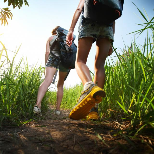 Two hikers with backpacks walking through lush green meadow