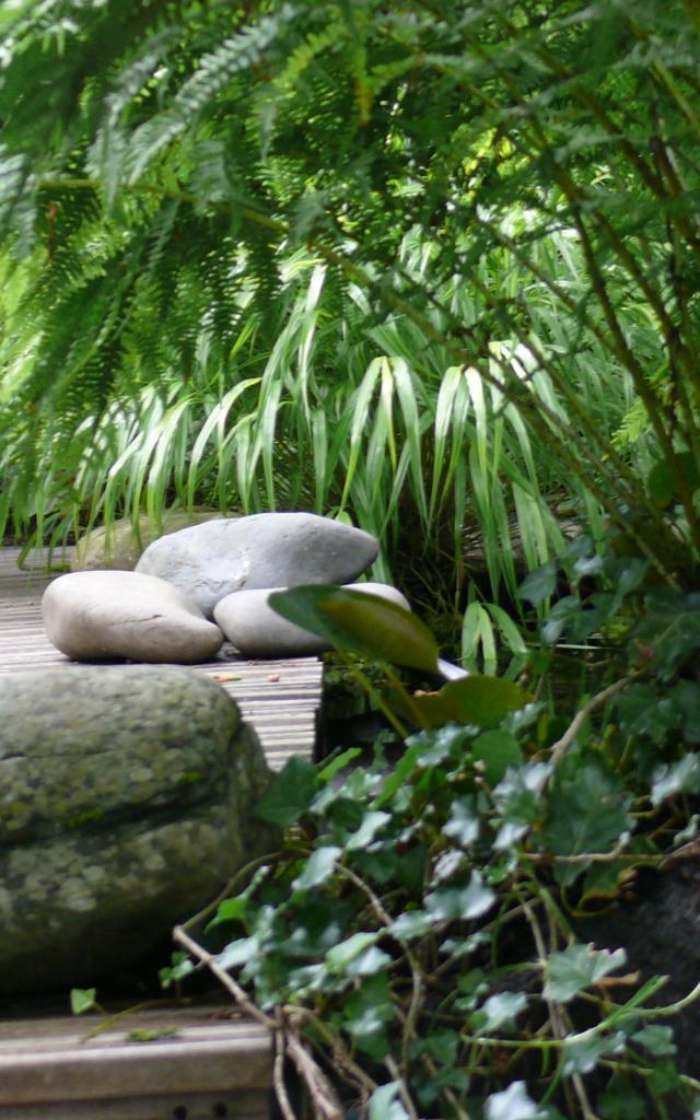 Bagnoles Orne Jardin Retire Fleur Nature Plante Arbre Remarquable Annie Blanchais 7