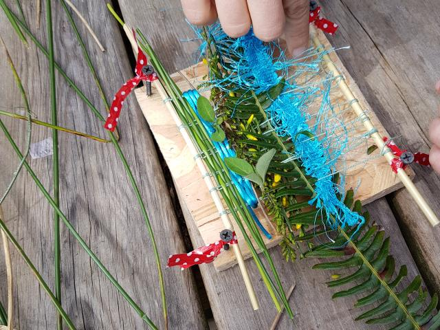 Bagnoles Orne Sortie Nature Famille Herbier Activite Plein Air Foret