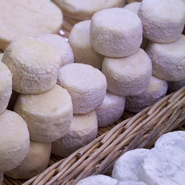 Petits fromages ronds sur panier en osier