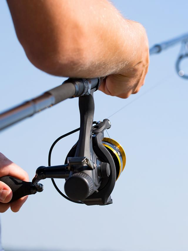 fishing reel lake river fisherman holiday fish catching gear tench rod fisher hobbies spinning spin - stock image
