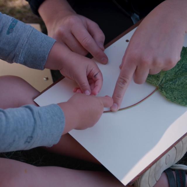 Bagnoles Orne Experiences Video Serie Tuto Atelier Herbier Passionementalafolie