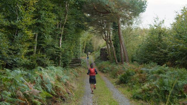 Bagnoles Orne Normandie Trail Course Coureur Traileur Ultra Jour