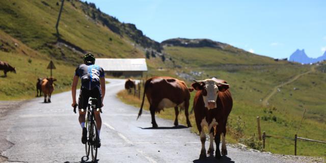 Cyclo Oisans Col Series Cols De La Croix De Fer Glandon (1)