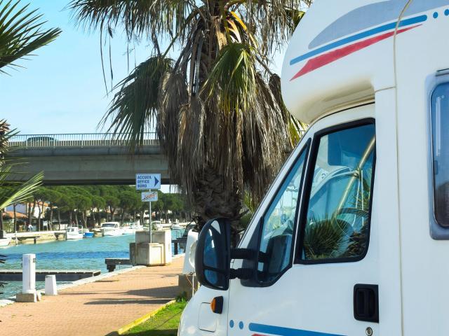 Camping car devant un palmier