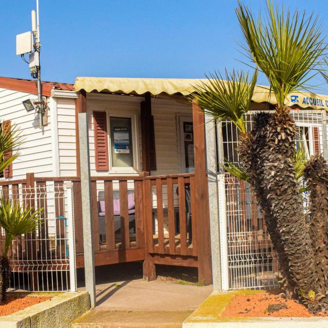 Bungalow accueil d'un camping avec deux palmiers à l'entrée