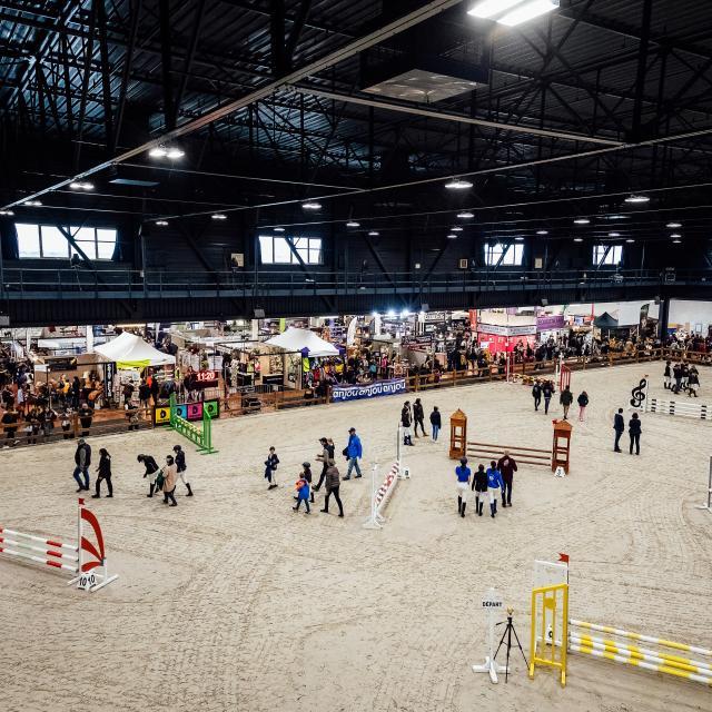 Salon du cheval 2018 - Parc des expositions d'Angers