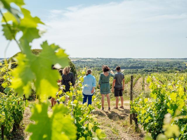 Angers, vins & escapade