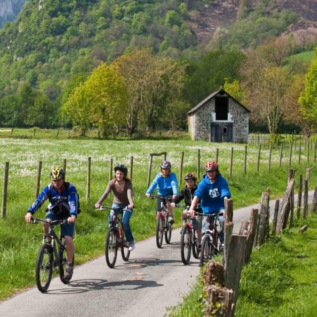 Paseo en bicicleta de montaña